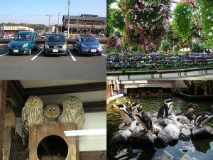 掛川花鳥園 その1